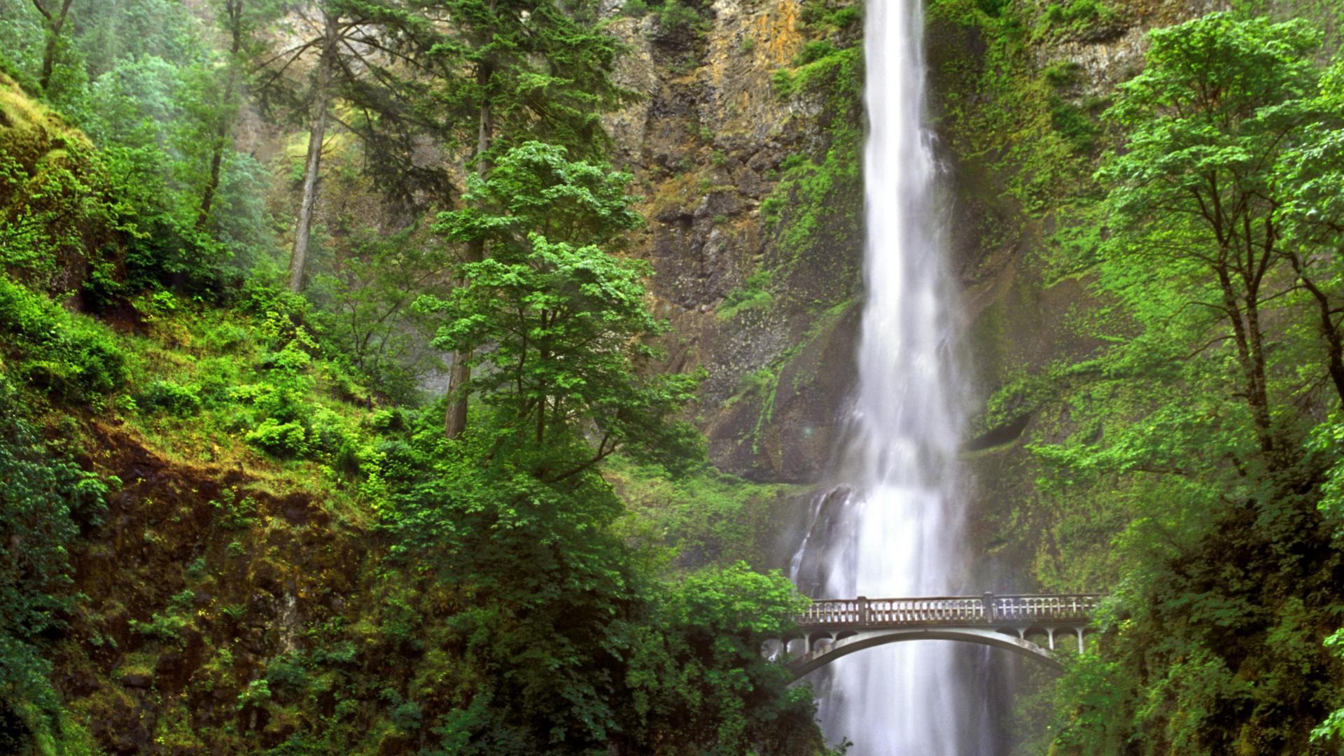 Multonomah Falls Wallpaper Desktop Free Desktop Oregon Wallpapers Pixelstalk Net