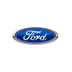 Free Ford Logo Human Anatomical Brain Diagram Wallpapers Pixelstalk Net