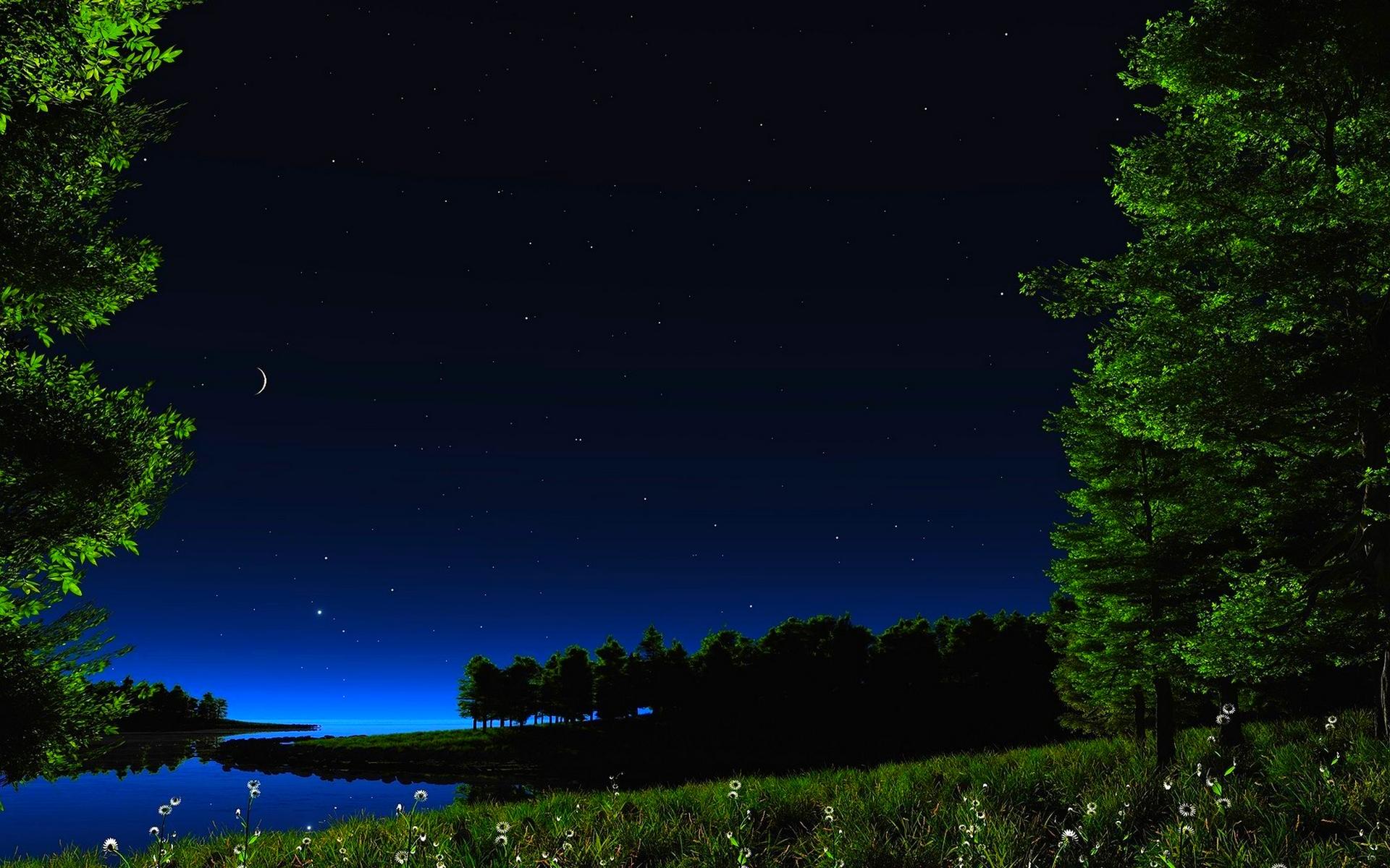 free hd starry night