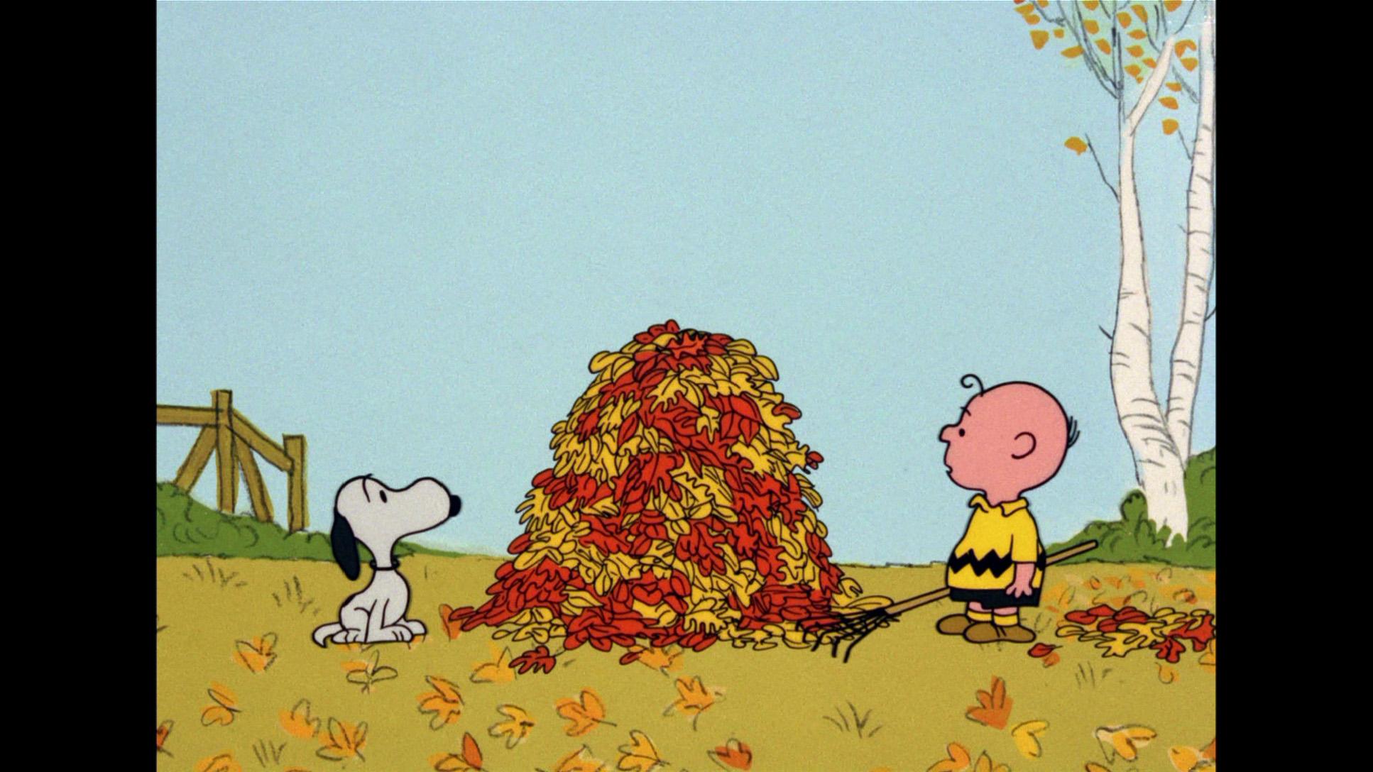 Free Snoopy Fall Wallpaper Great Pumpkin Charlie Brown Wallpapers Hd Pixelstalk Net