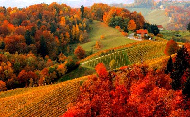 Hd Fall Scenery Wallpapers Pixelstalk Net