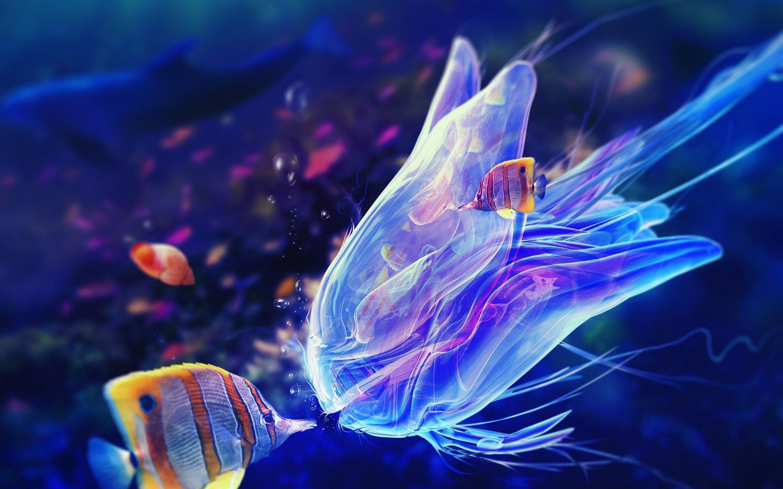 Fall Dog Wallpaper Jellyfish Wallpaper Download Free Pixelstalk Net