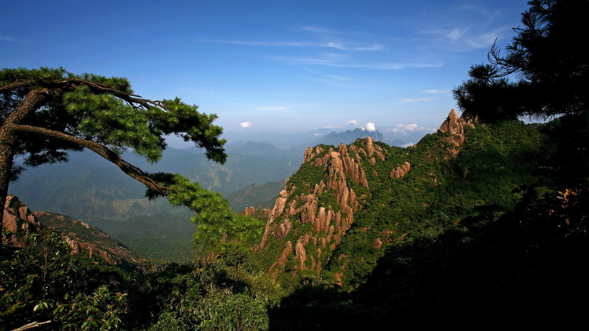 Fall Mountains Hd Desktop Wallpaper Download Jungle Hd Backgrounds Free Pixelstalk Net