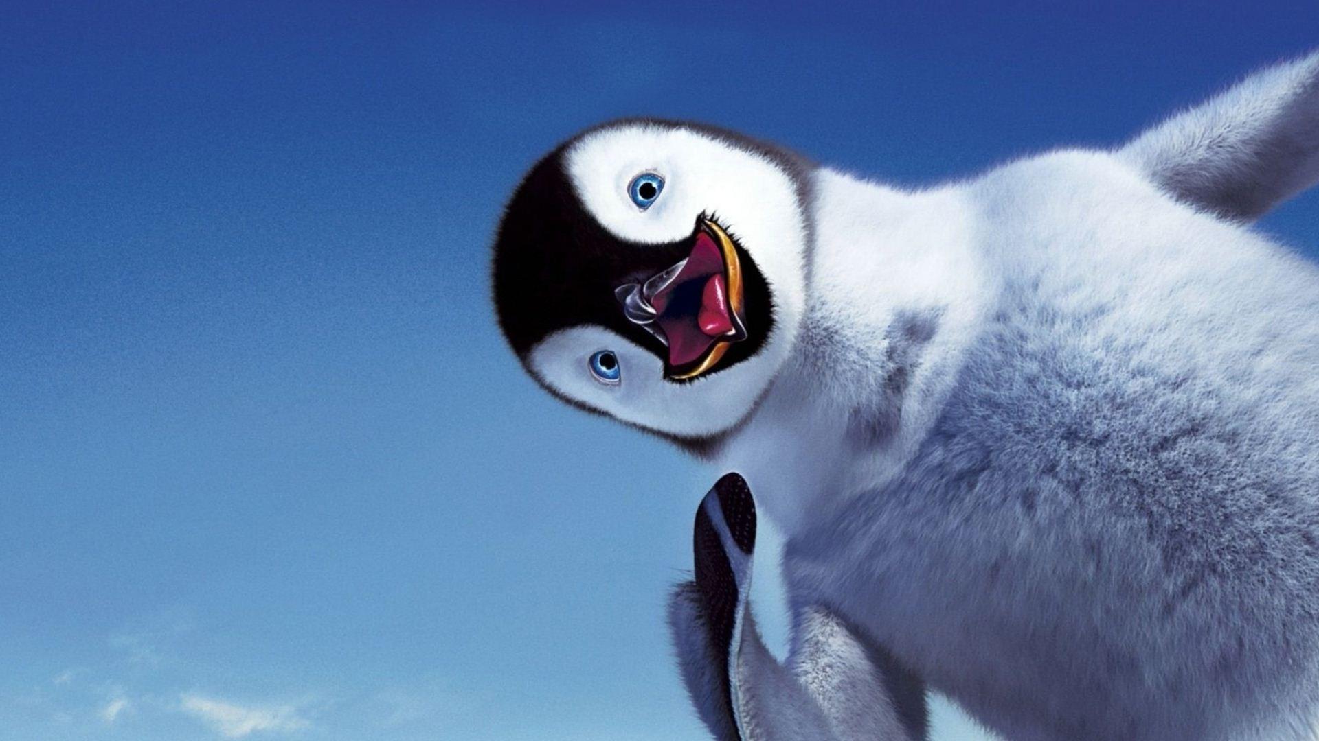 Cute Baby Pics For Whatsapp Wallpaper Penguin Backgrounds Hd Pixelstalk Net
