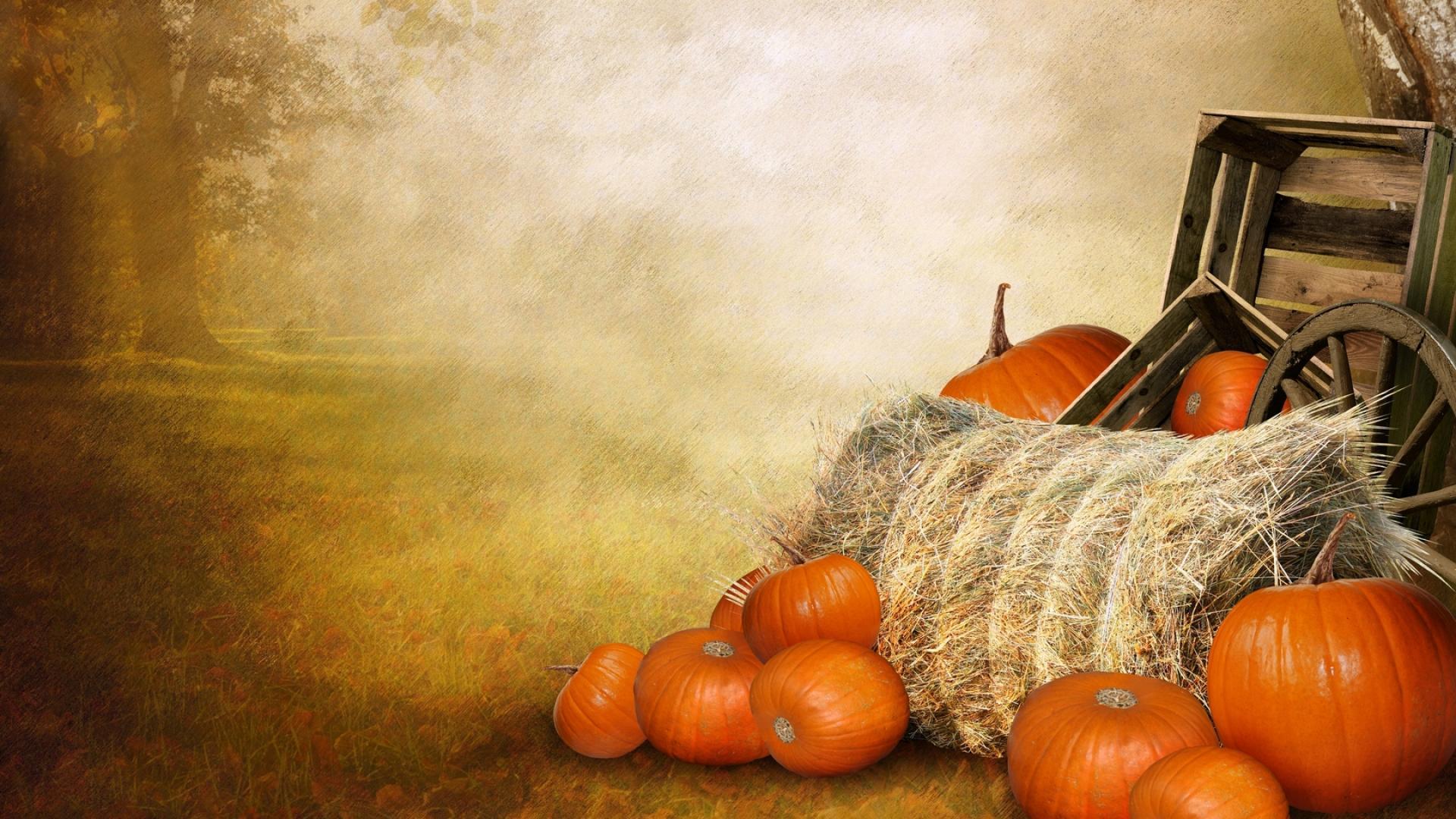 Fall Pumpkins Desktop Wallpaper Pumpkin Wallpapers Hd Pixelstalk Net