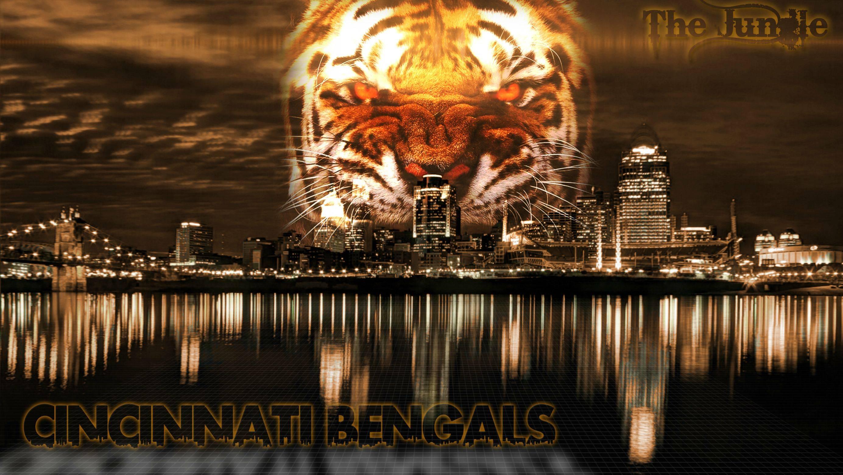 Cincinnati Bengals Hd Wallpaper Download Free Cincinnati Bengals Backgrounds Pixelstalk Net