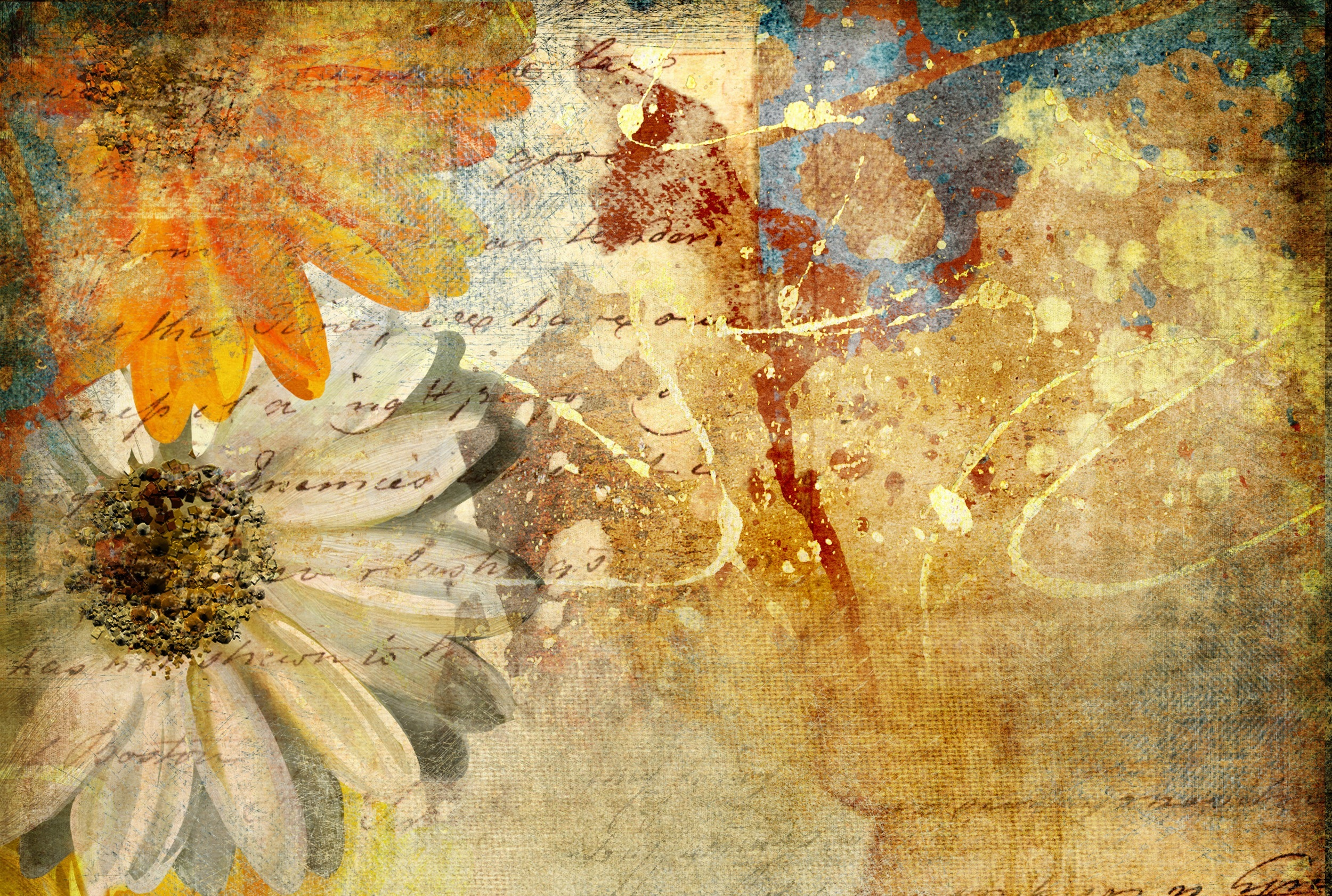 Fall Flowers Desk Background Wallpaper Antique Images Free Download Pixelstalk Net