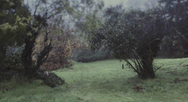 Fall Scenery Desktop Wallpapers Depressing Wallpapers Hd Pixelstalk Net