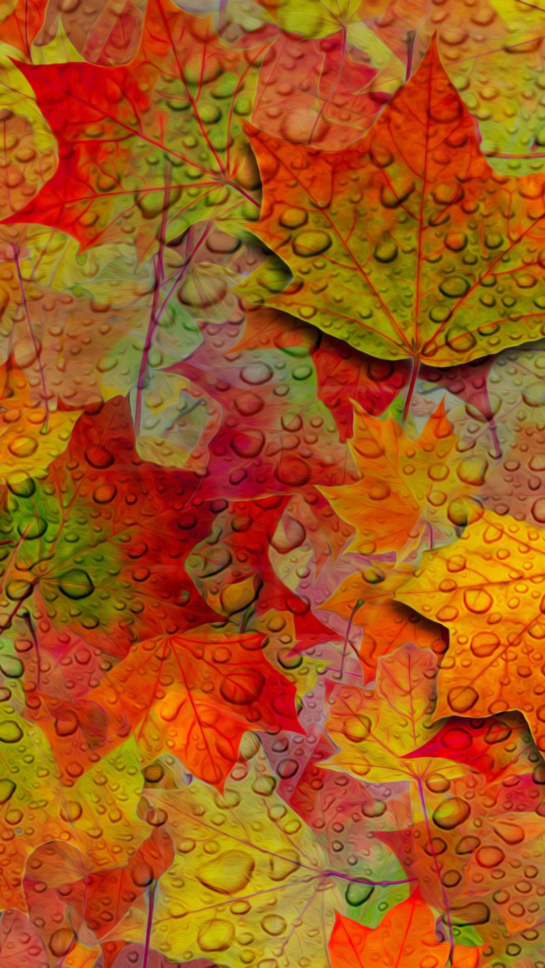 Fall Leaves Phone Wallpaper Art Fall Iphone Wallpapers Pixelstalk Net