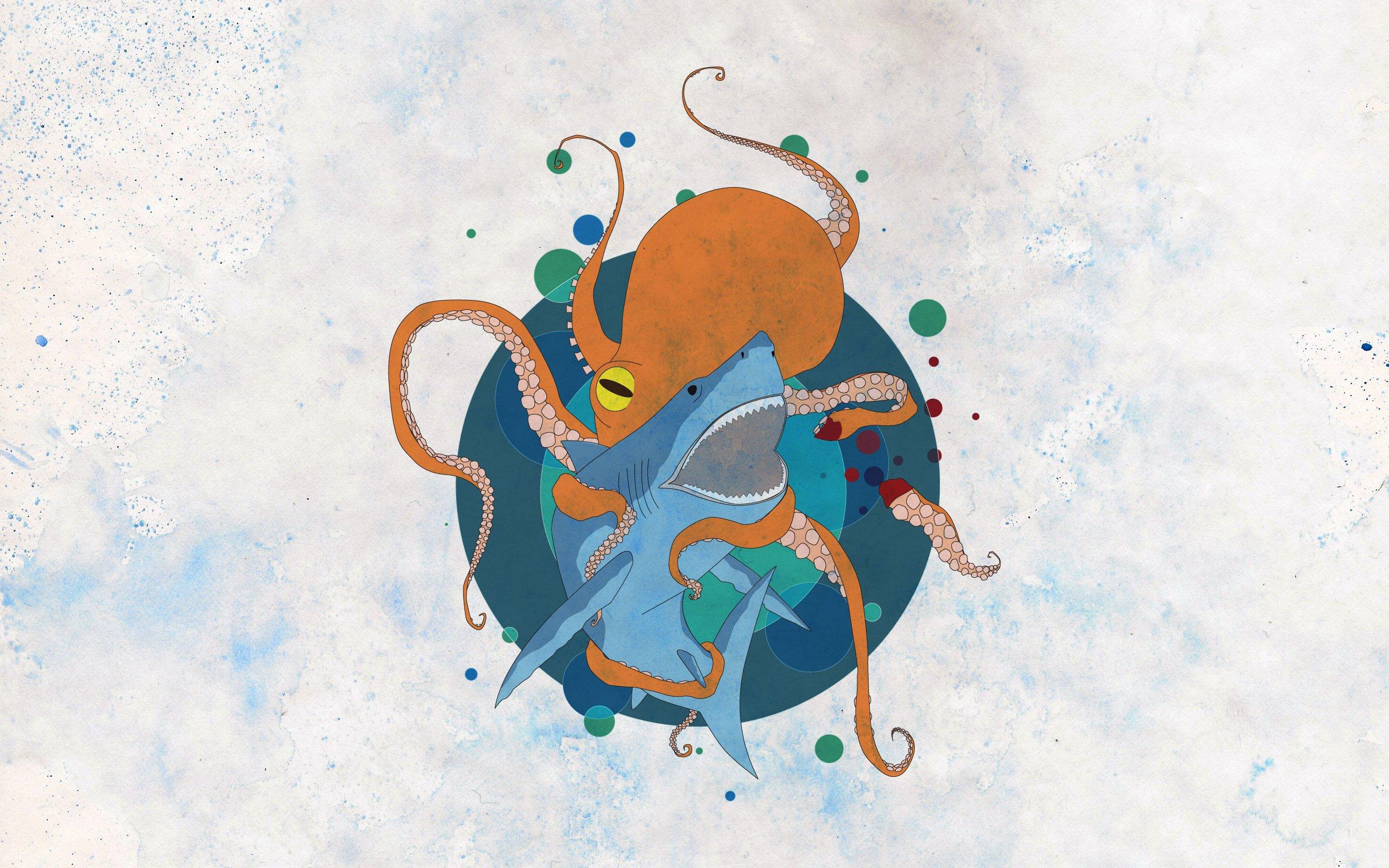 Corgi Wallpaper Cute Octopus Images Hd Pixelstalk Net