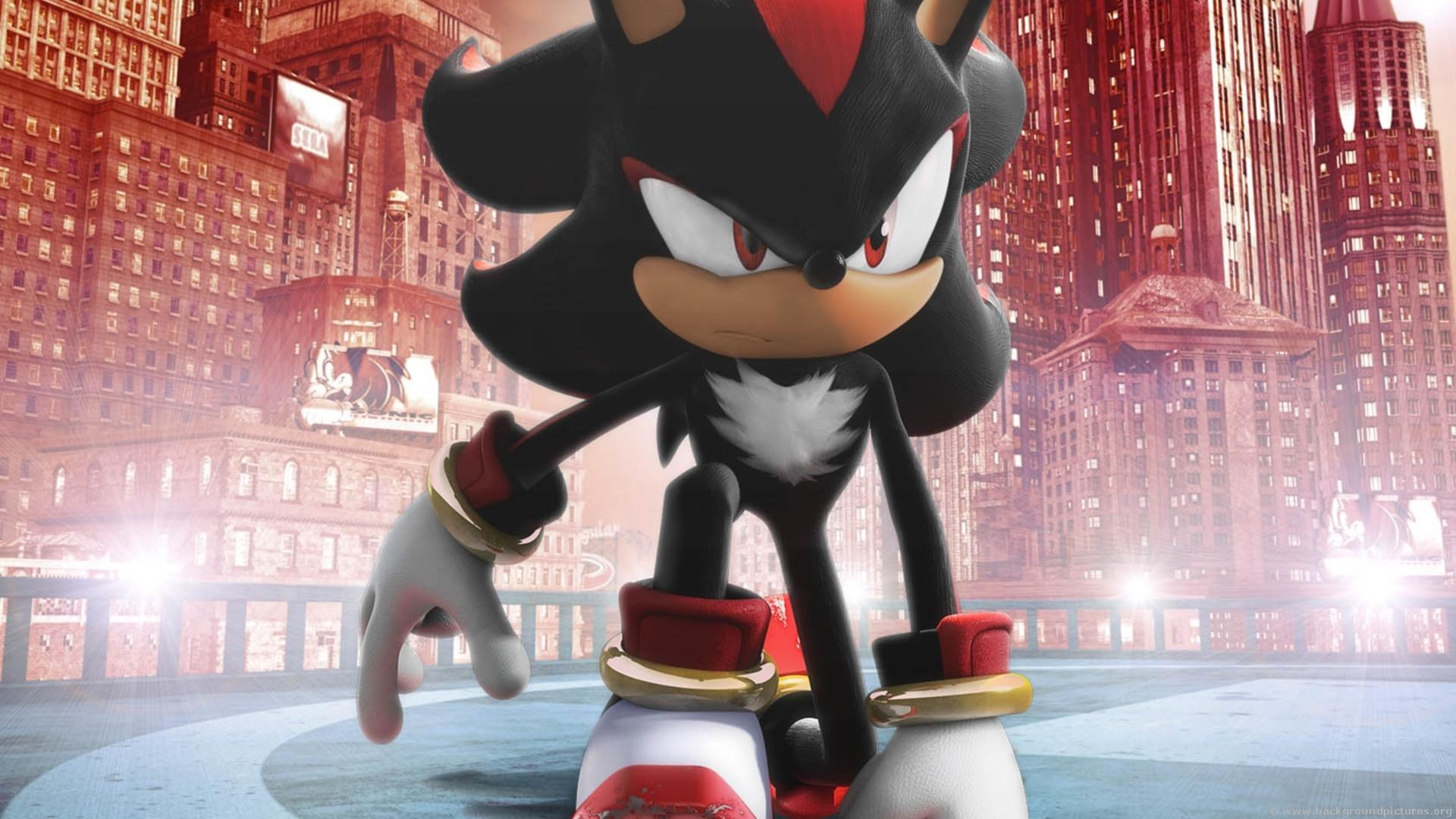Game Sonic Shadow Hedgehog