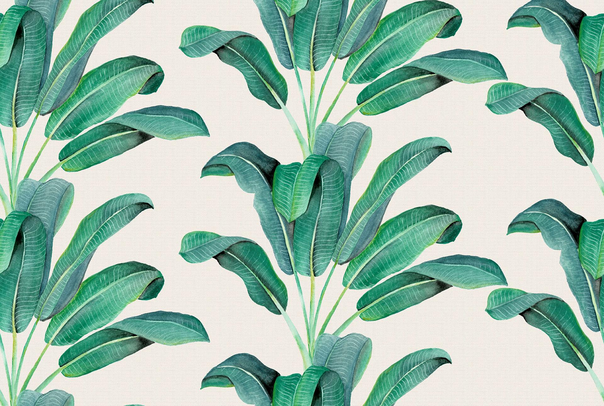 Cute Anime Watercolor Wallpapers Banana Leaf Images Free Pixelstalk Net