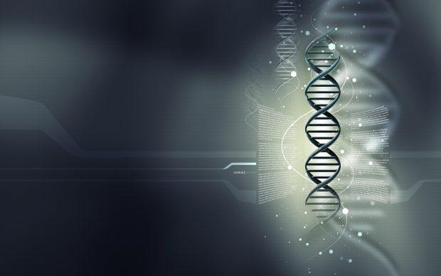 3d Wallpapers 1080p Free Download Hd Biology Wallpaper Pixelstalk Net