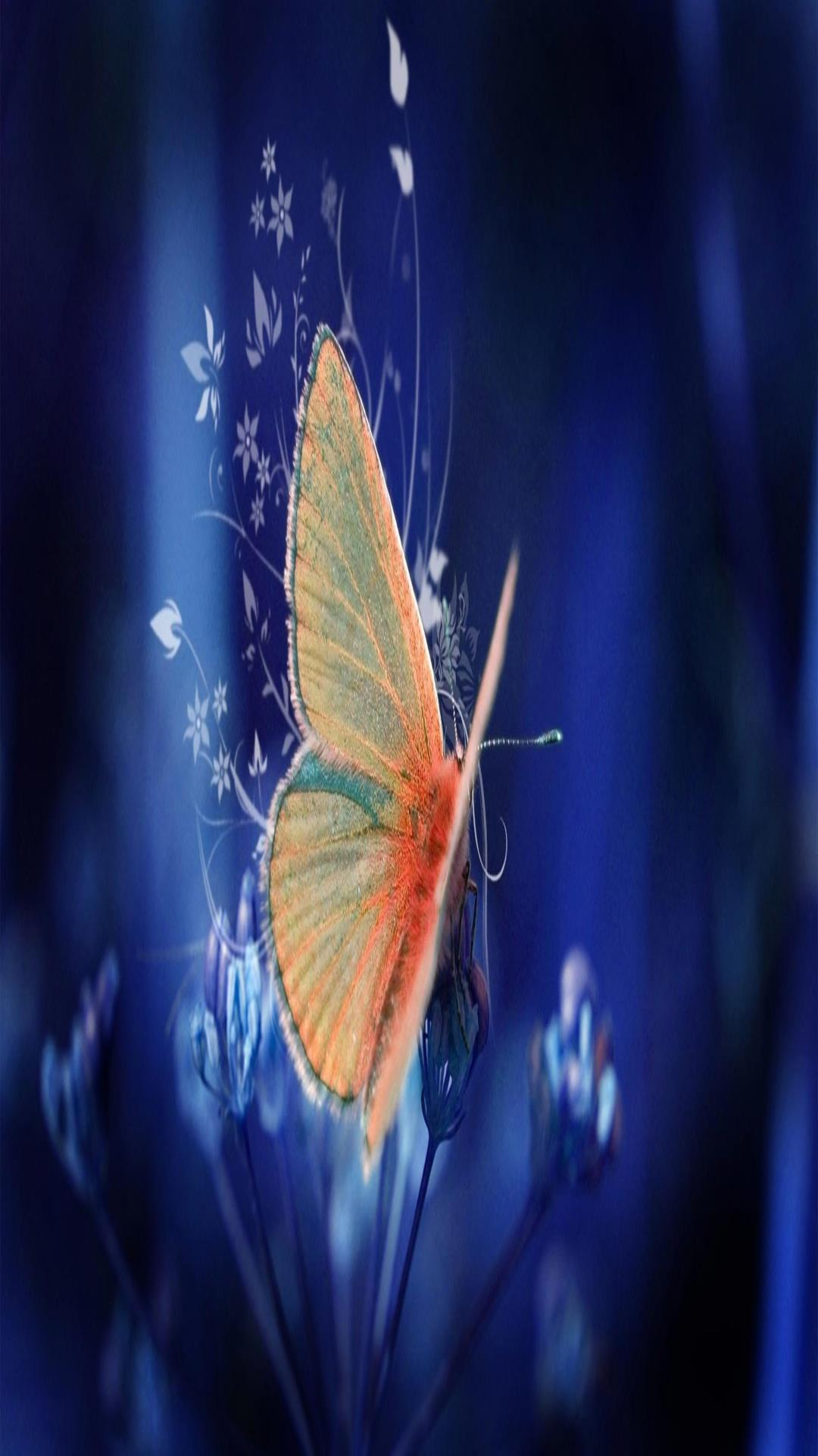 Cute Phone Wallpaper Download Butterfly Wallpaper For Android Pixelstalk Net