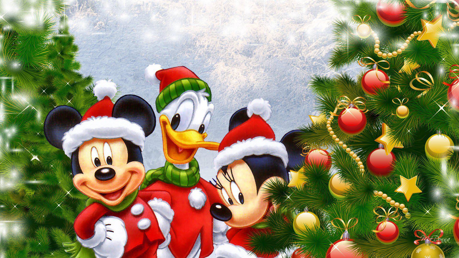 Fall Daisy Wallpaper Disney Christmas Wallpapers Hd Pixelstalk Net