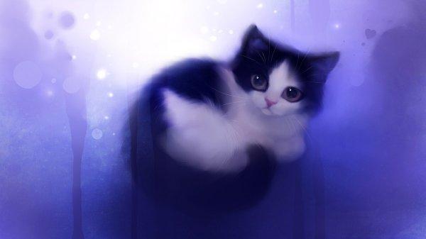 Cute Anime Cat Desktop