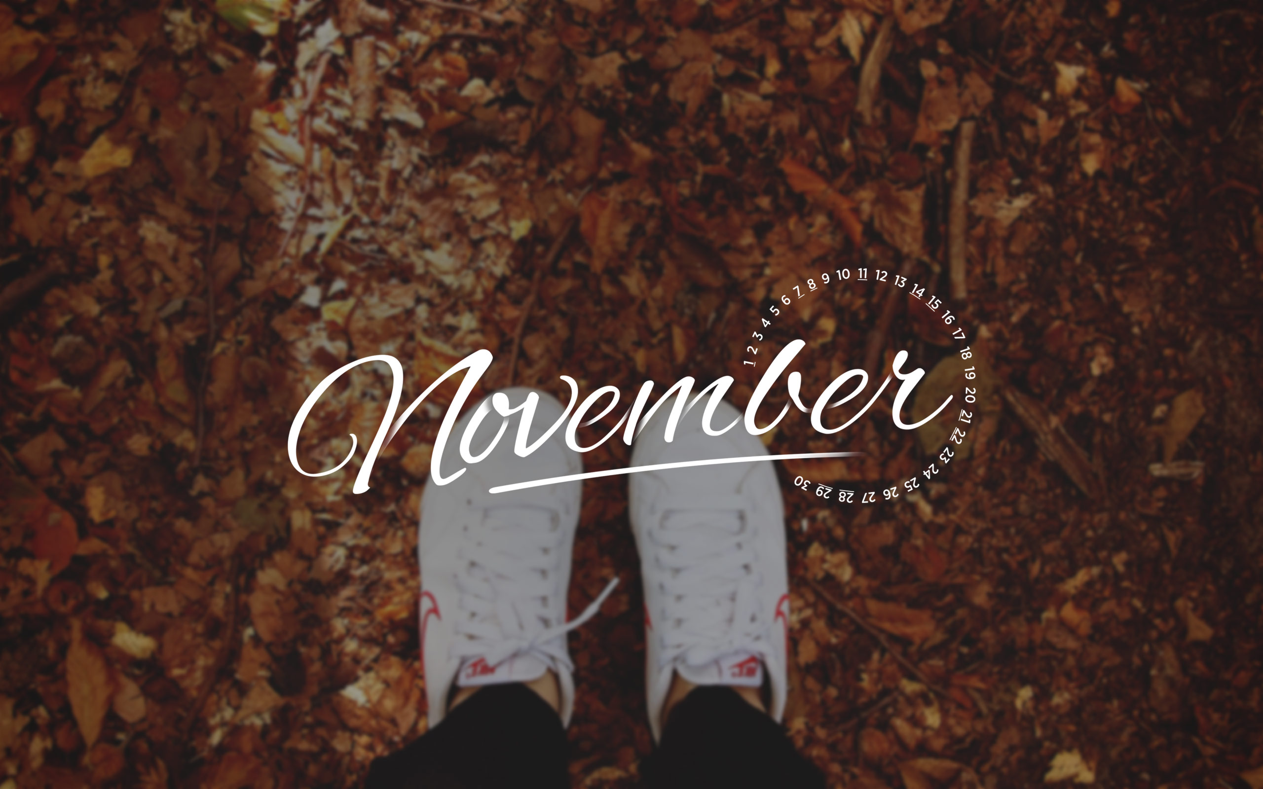 Nove Ber Fall Wallpaper For Computer November Wallpapers Hd Free Download Pixelstalk Net