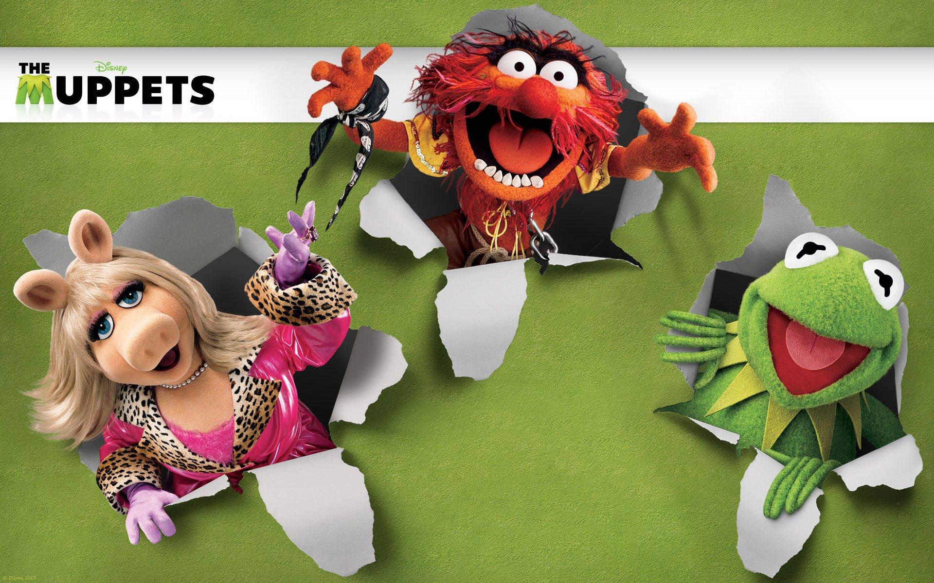 Funny Frog Wallpaper Quotes And Pictures Beaker Muppets Desktop Wallpaper Pixelstalk Net