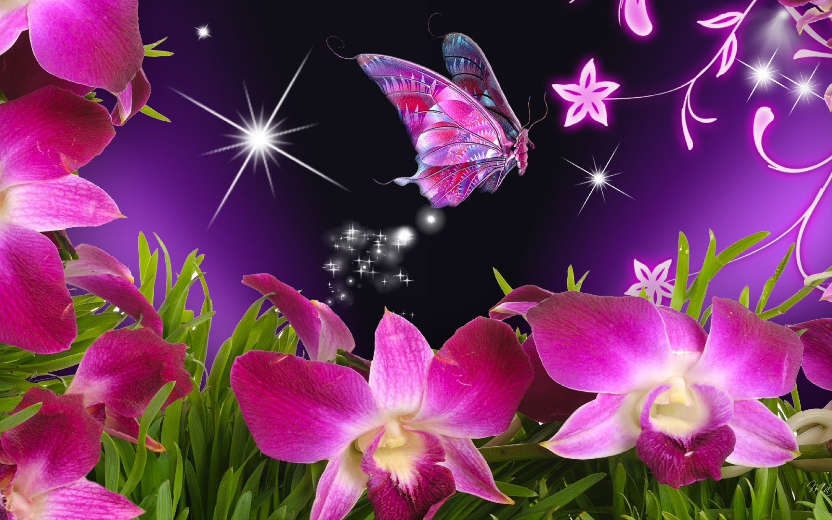 Hd Wallpapers Butterflies Widescreen Bright Floral Background Free Download Pixelstalk Net