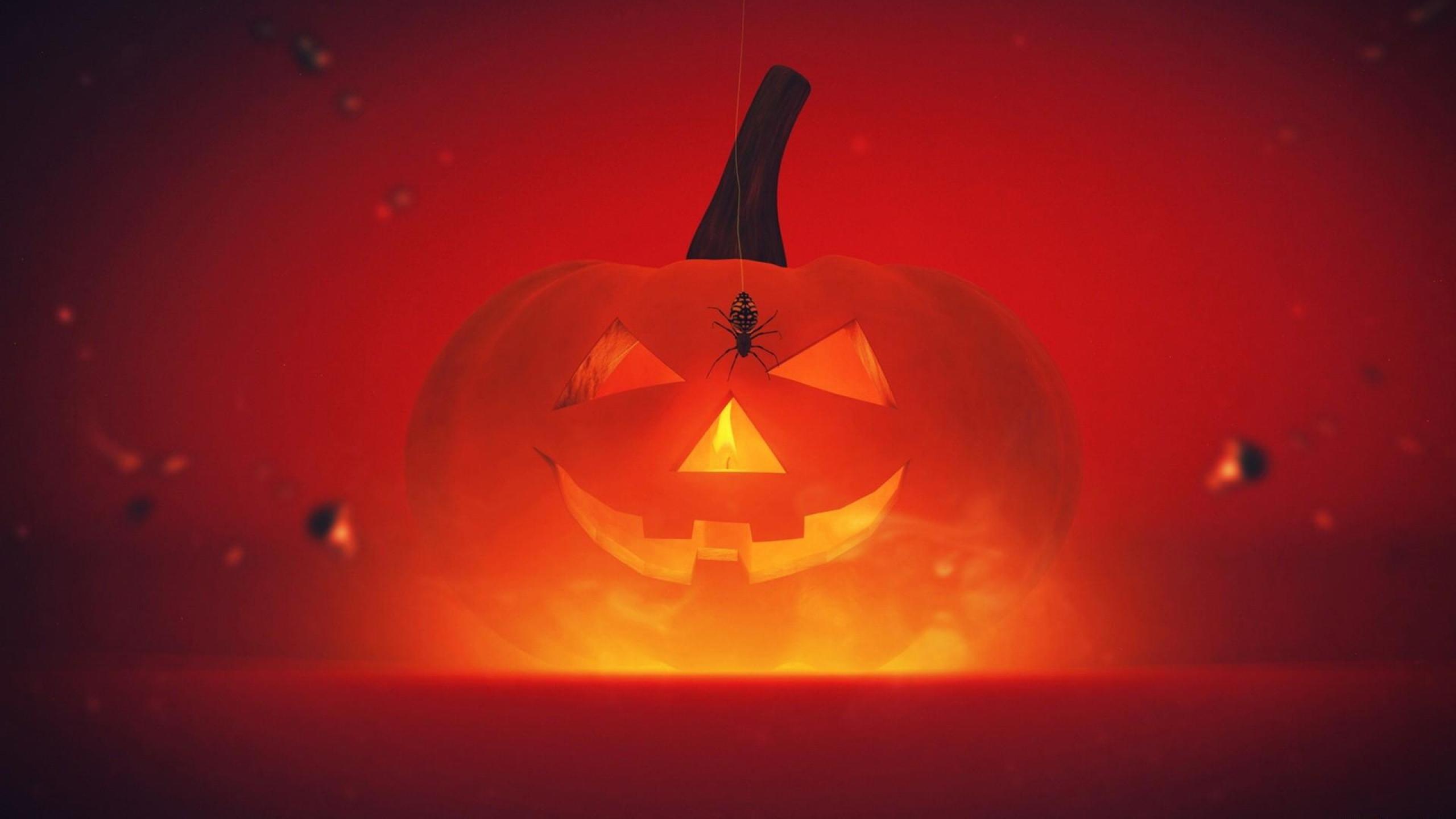 Hq Cute Baby Wallpapers Pumpkin Halloween Hd Wallpaper Pixelstalk Net