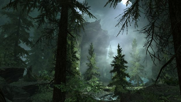 Foggy Forest Backgrounds.