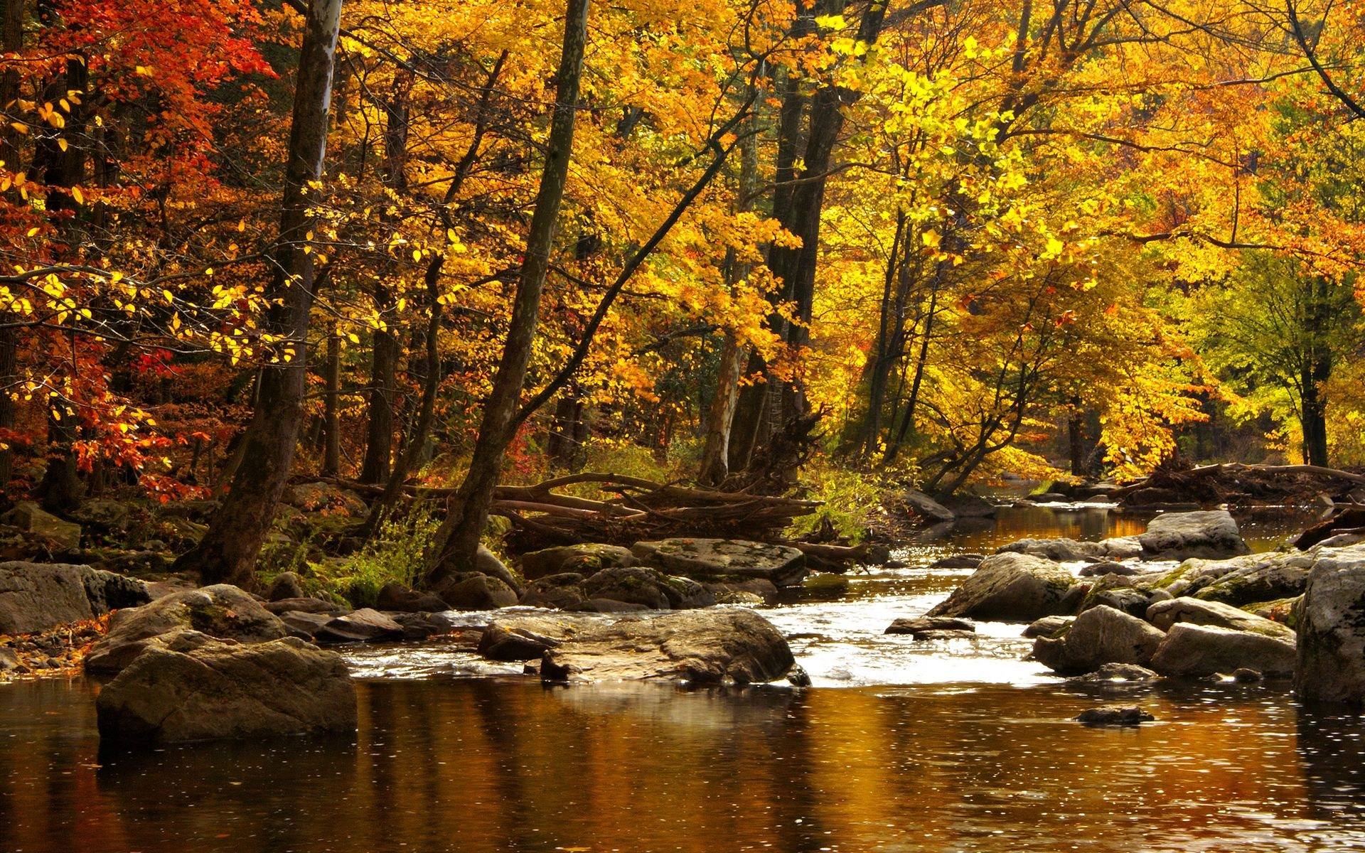 Tablet Wallpaper Europe Fall Autumn River Background Free Download Pixelstalk Net