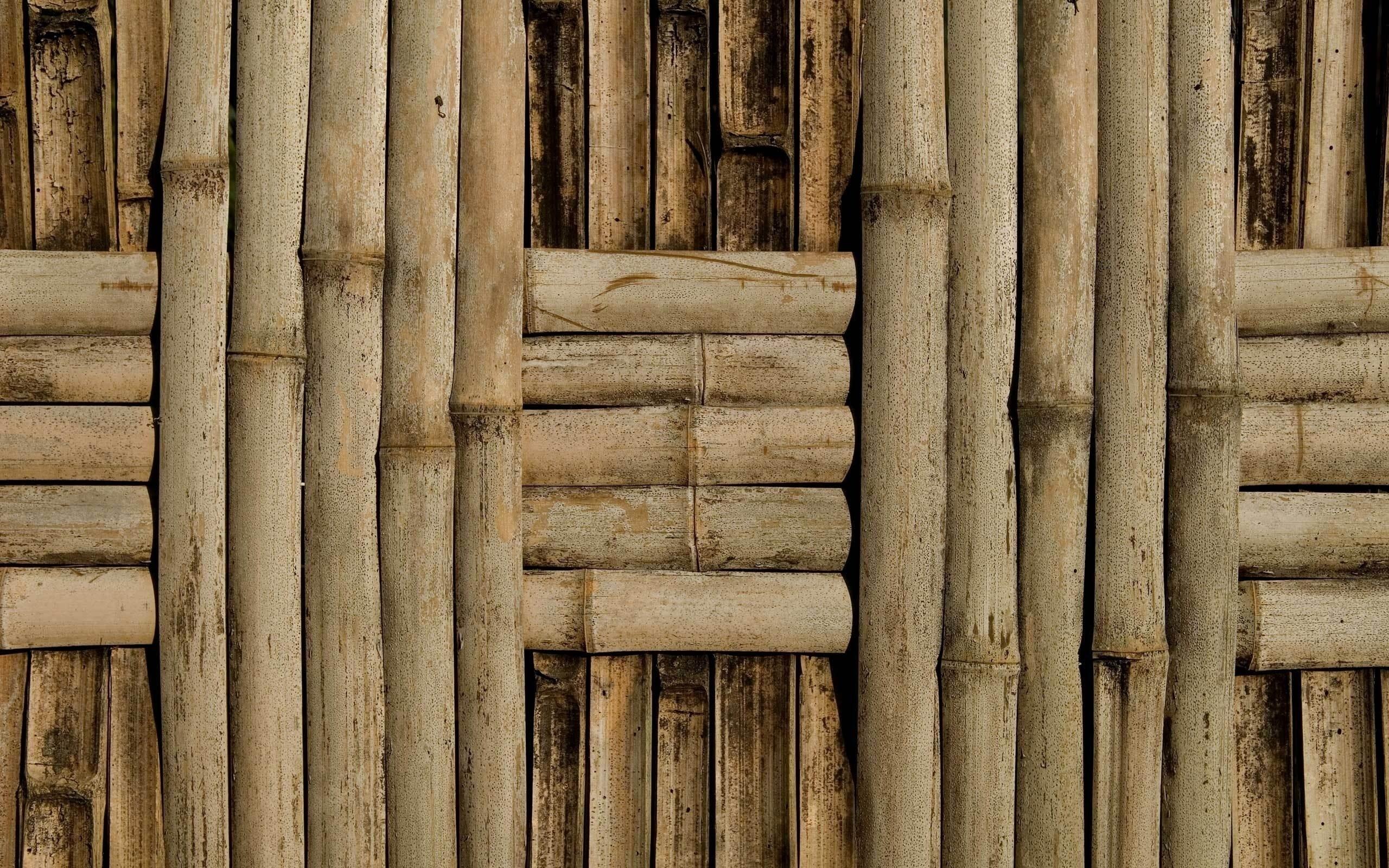 Wallpaper For Iphone Summer Bamboo Backgrounds Free Download Pixelstalk Net