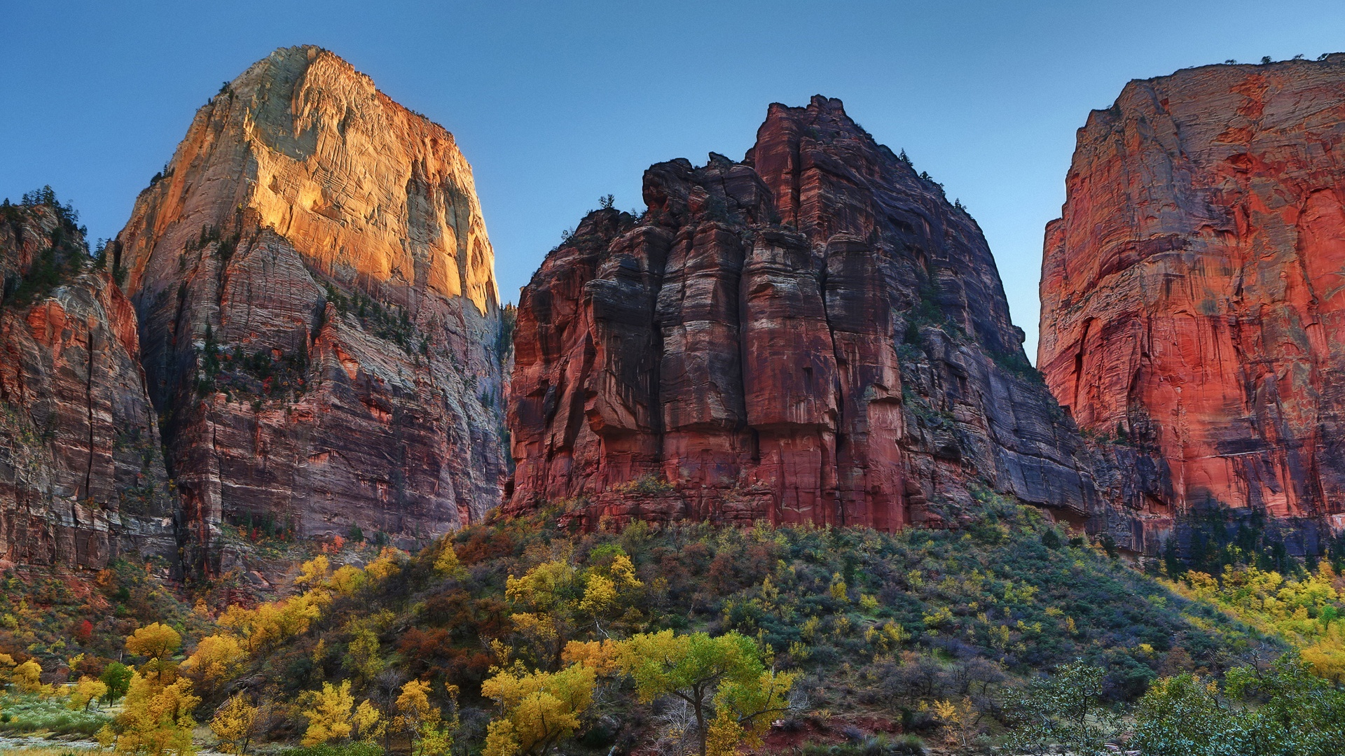 Free Fall Cell Phone Wallpapers Zion National Park Wallpapers Hd Pixelstalk Net