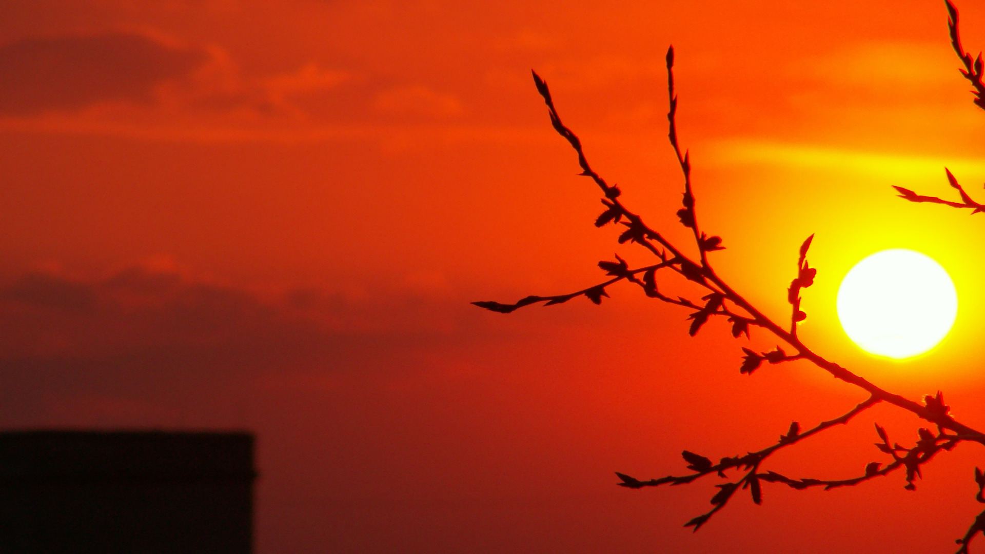 Hd Widescreen Fall Wallpaper Sunset Wallpapers Hd Pixelstalk Net