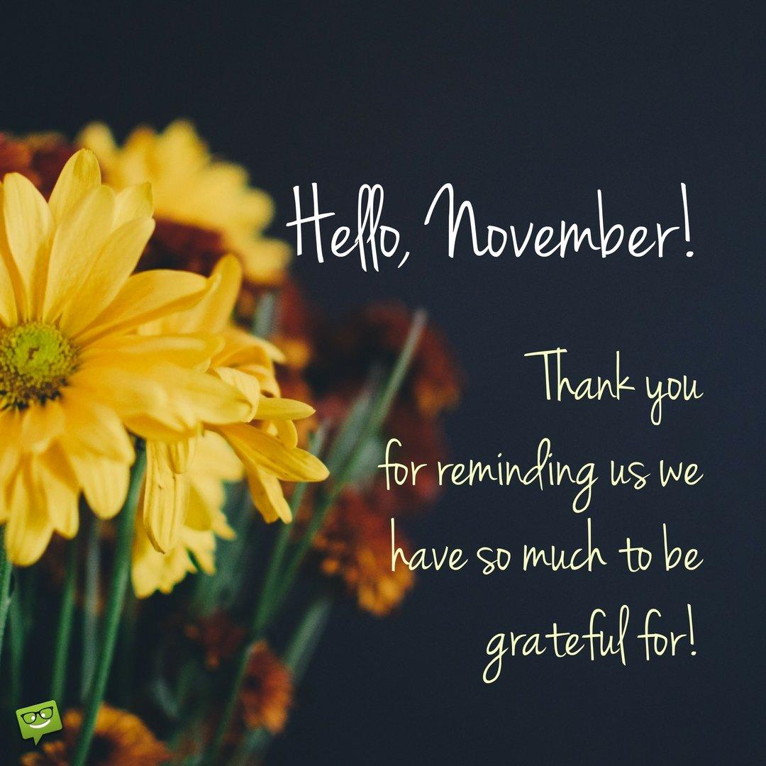 Welcome Fall Wallpaper Hello November Hd Wallpapers Pixelstalk Net