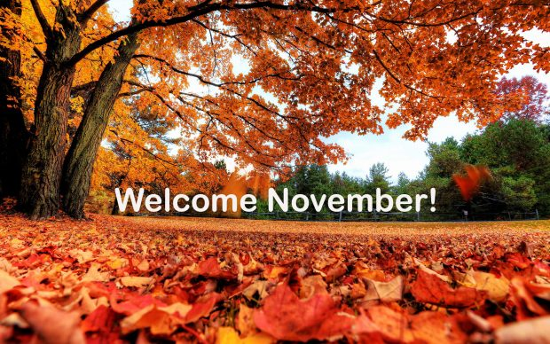 Home Screen Wallpaper Fall November Images Will Surprise You Pixelstalk Net