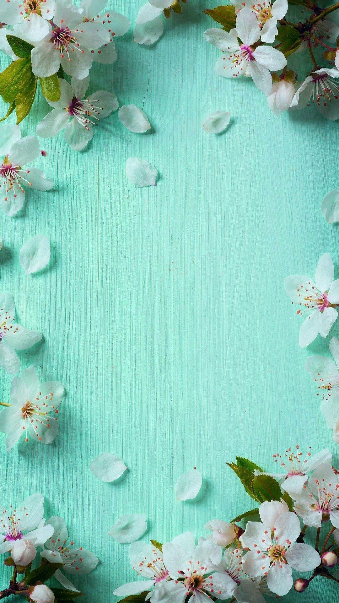 Cute Wallpaper Hd For Mobile Free Download Beautiful Spring Wallpapers For Iphone Pixelstalk Net