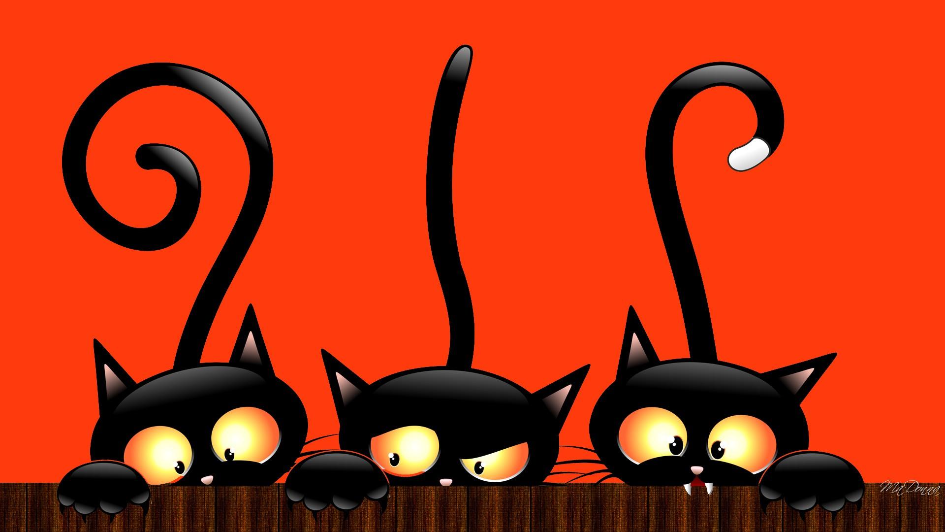 1920x1200 cute cat halloween wallpaper halloween cat wallpaper. Halloween Backgrounds Free Download Pixelstalk Net