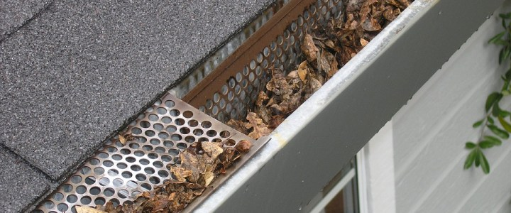 Reasons to Clean Your Gutters