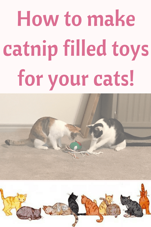 How to make catnip filled toys for your cats!