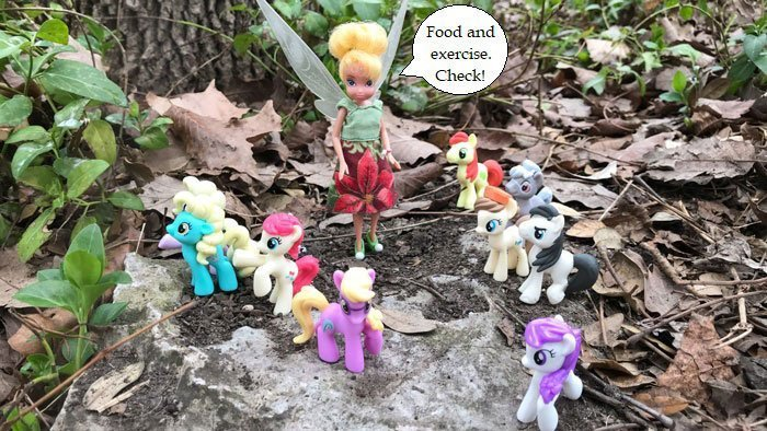 Doll Photo Story: Tinkerbell Outside With Ponies.