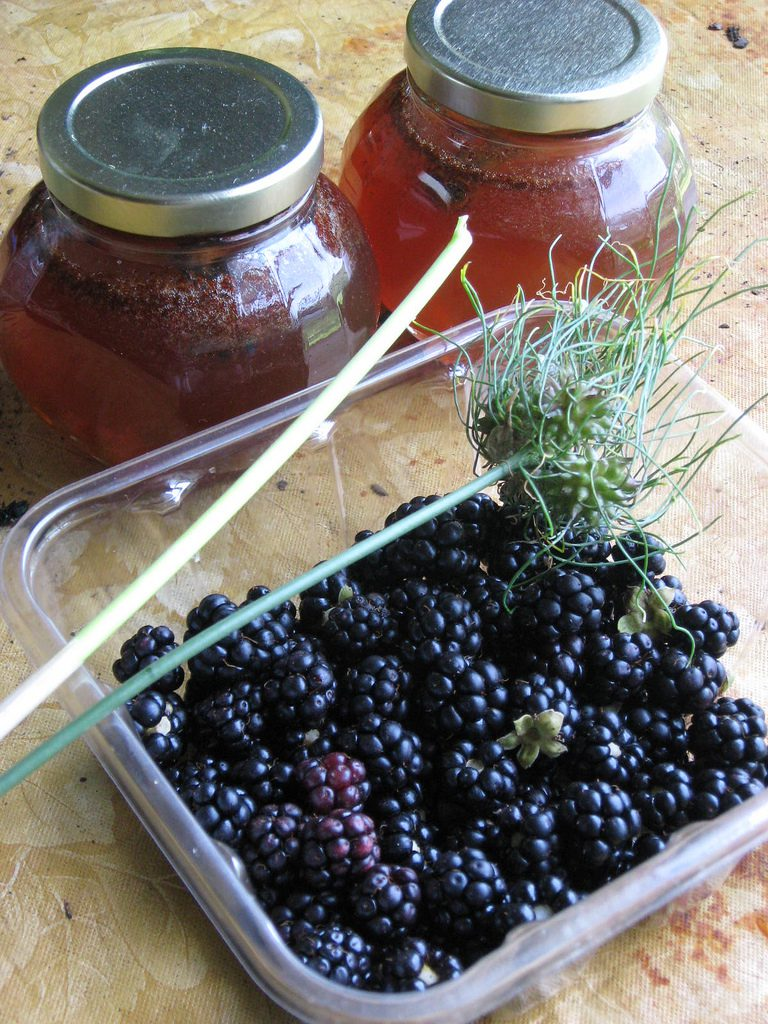 Recipe Box: One Gallon of Blackberry Mead