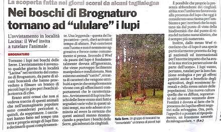 Nei boschi di Brognaturo tornano ad ululare i lupi