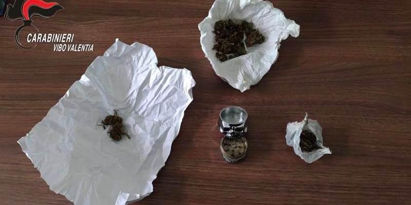 Sequestro di marijuana nel cortile del Nautico di Pizzo, indagini