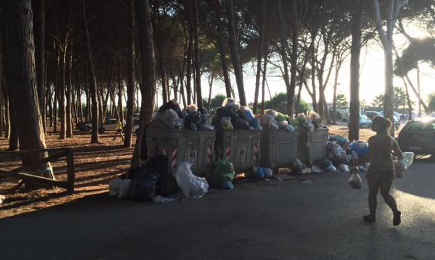 Caos rifiuti a Pizzo, i lavoratori interrompono l'agitazione
