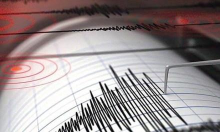 Scossa di terremoto tra le province di Reggio Calabria e Vibo Valentia