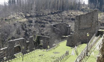 La Calabria la Regione più ricca e industrializzata sotto i Borbone: una pioggia di fake news.