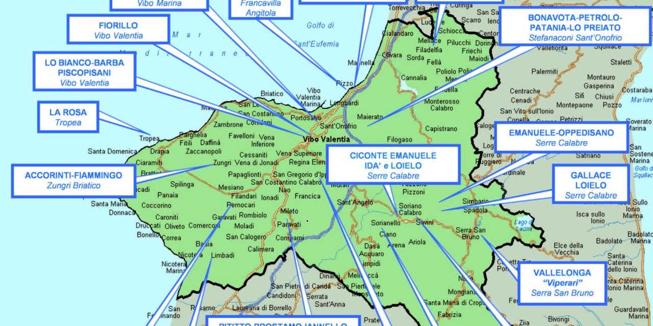 FOTO – Le mappe dell'organizzazione delle cosche in Calabria e al Nord secondo la Dia – Il Quotidiano del Sud