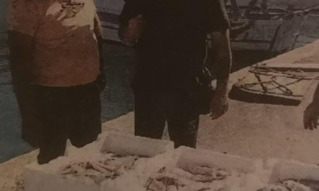 Arrivano nuovi paletti sulla pesca a strascico