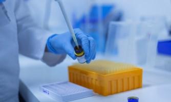 CALABRIA INFETTA. A Vibo Valentia al 12,58% l'incidenza dei tamponi contagiati, tre volte la media nazionale