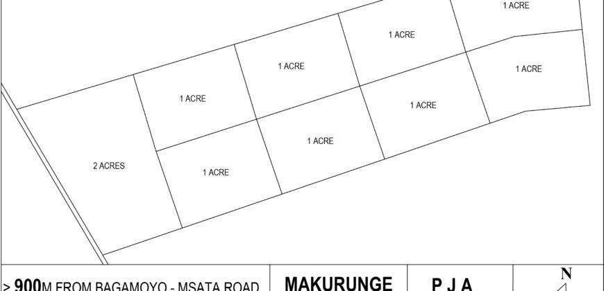 Makurunge Farm