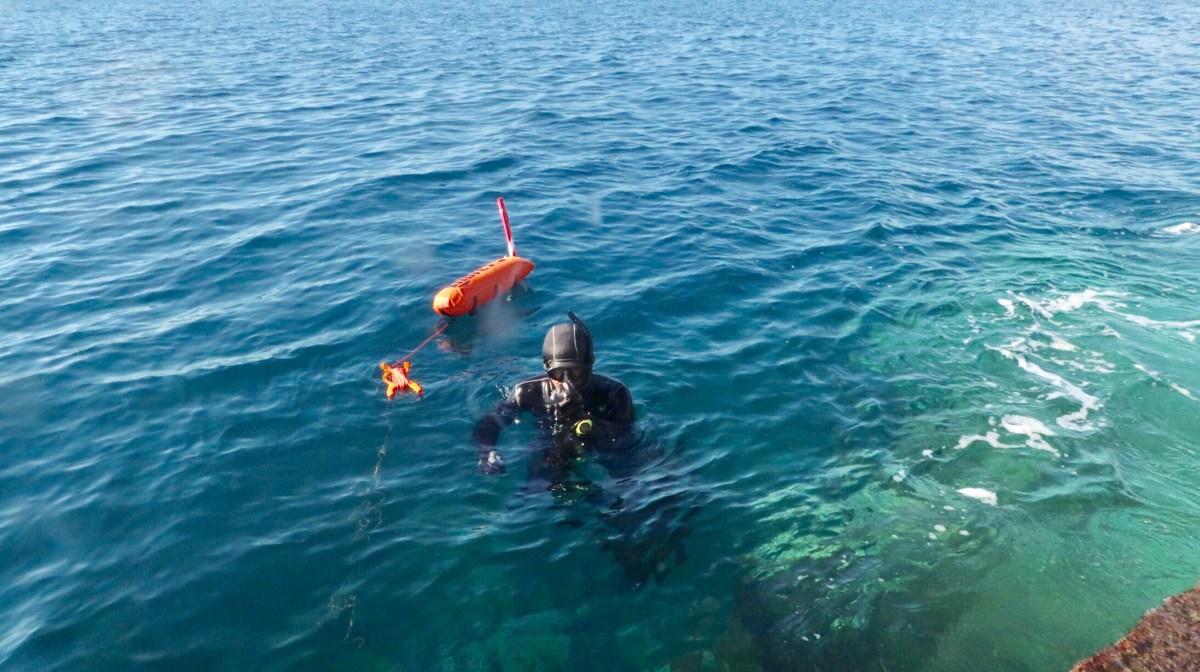 The Freediving Season is On!