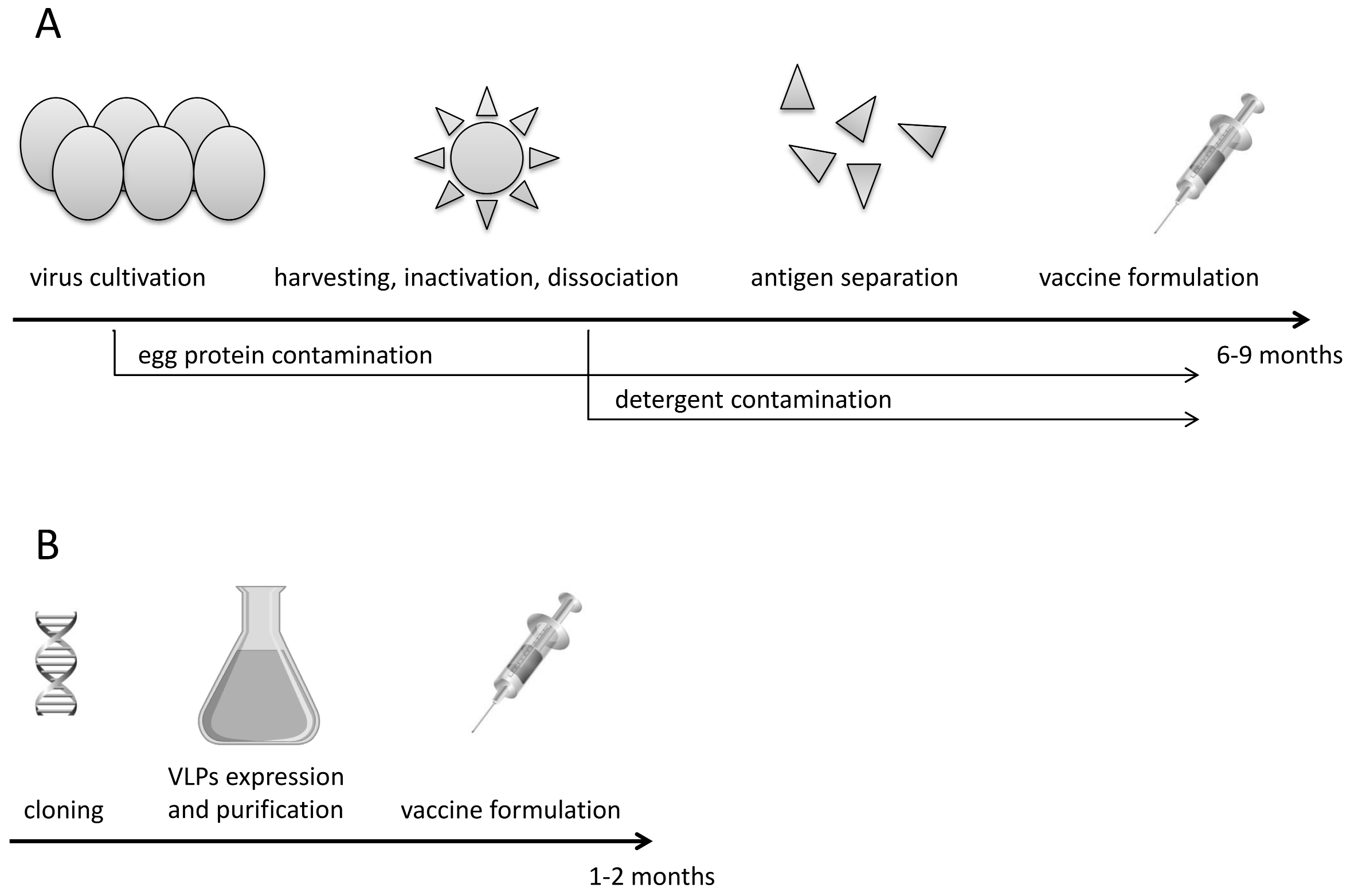 Virus Like Particles as Immunogens and Universal