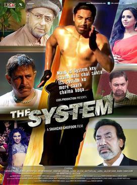 the system pakistani movie poster