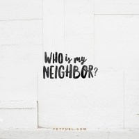 My Neighbor – Neighbors Series – Part 2